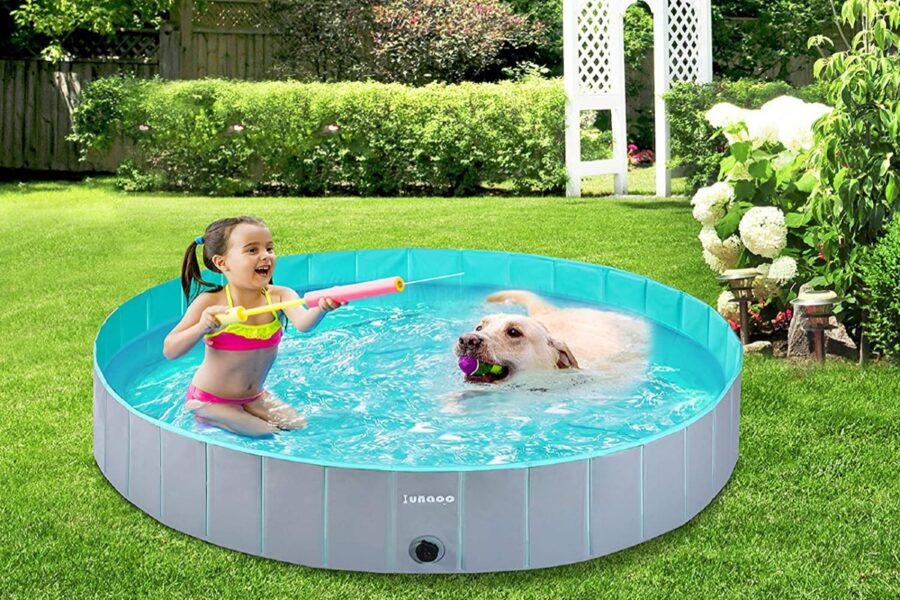 piscina con cane e bambina