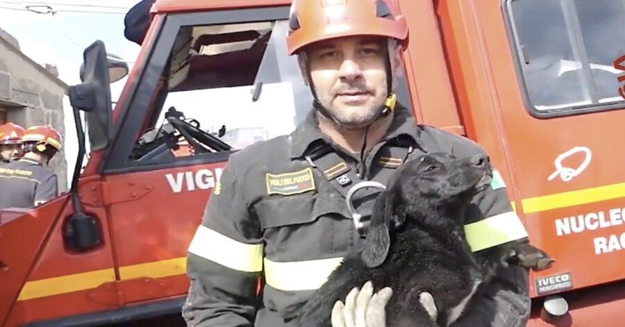 pompiere con cucciolo salvato in braccio
