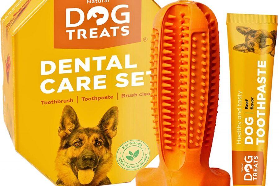 gioco per denti del cane