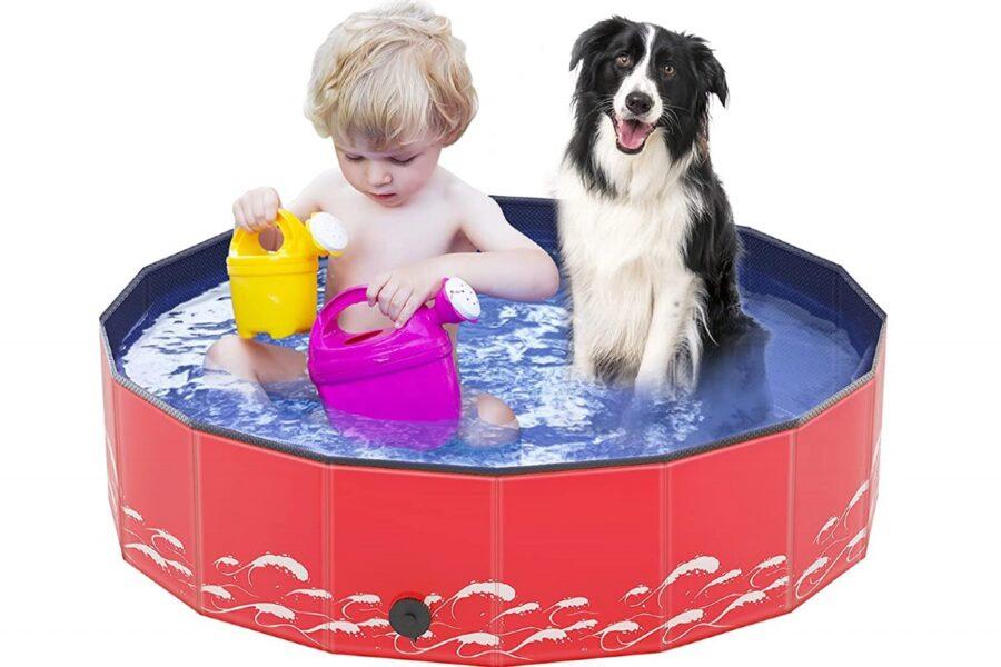 piscina per cani e bambini