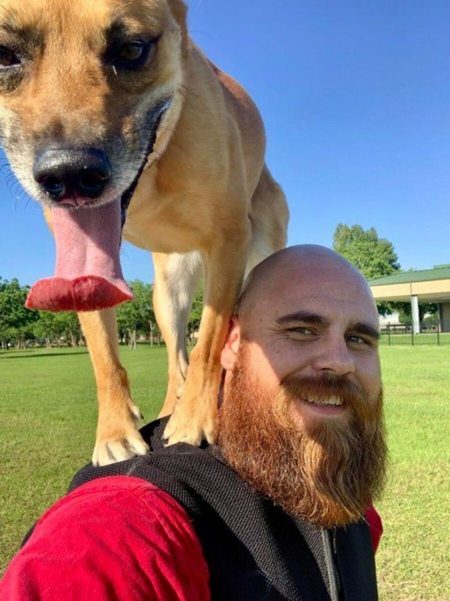 cane spalle papà