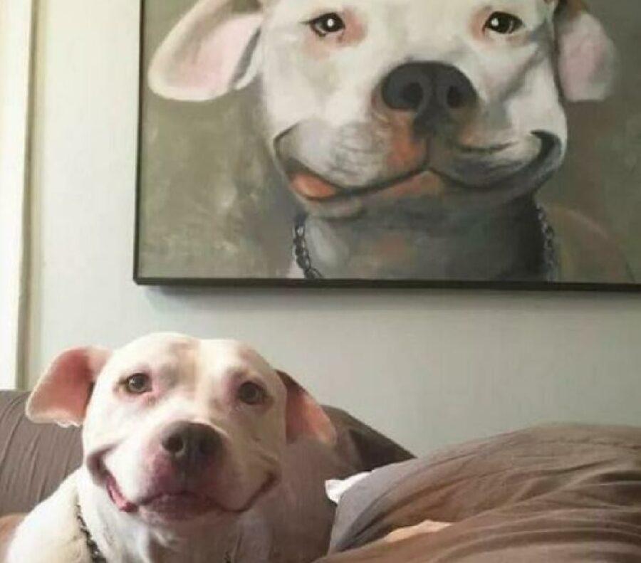 cane bianco sorriso quadro