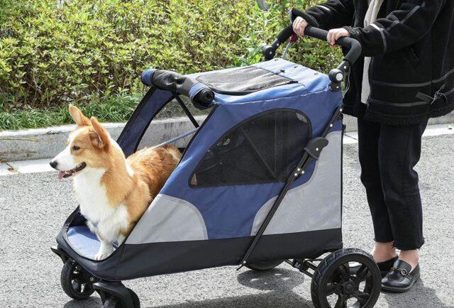 passeggino per cani