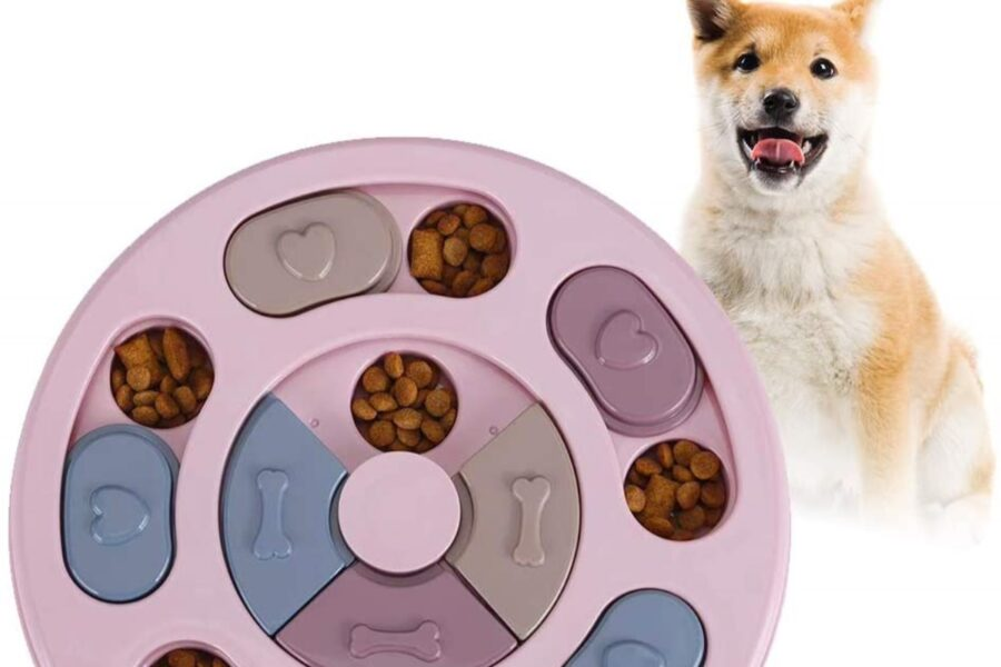 gioco interattivo per cani