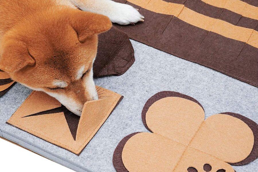 tappetino interattivo per cani
