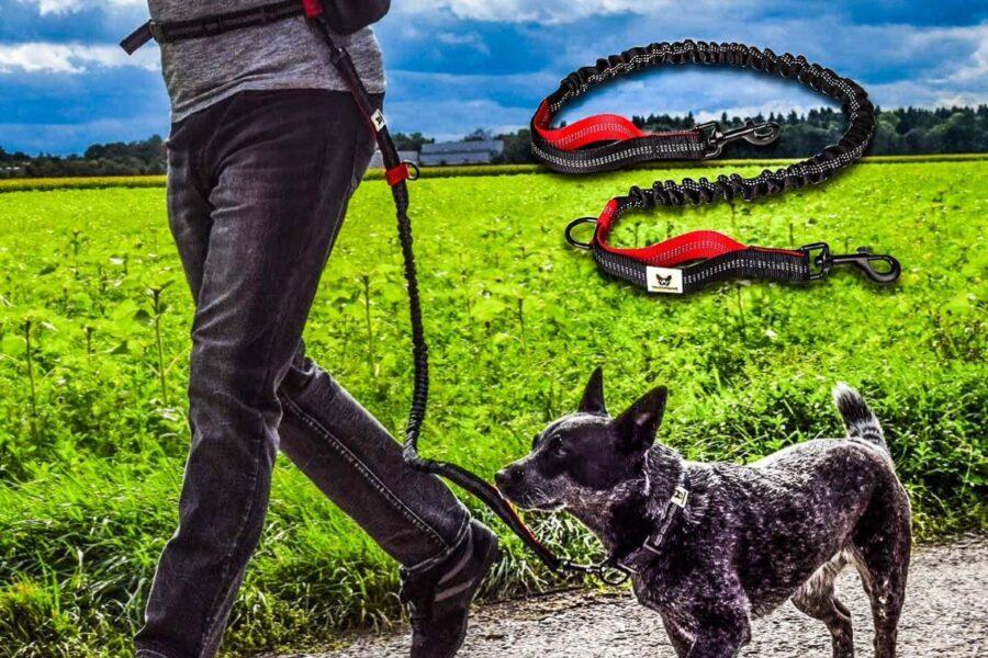 guinzaglio per movimento libero con cane