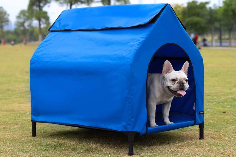 tenda per cane