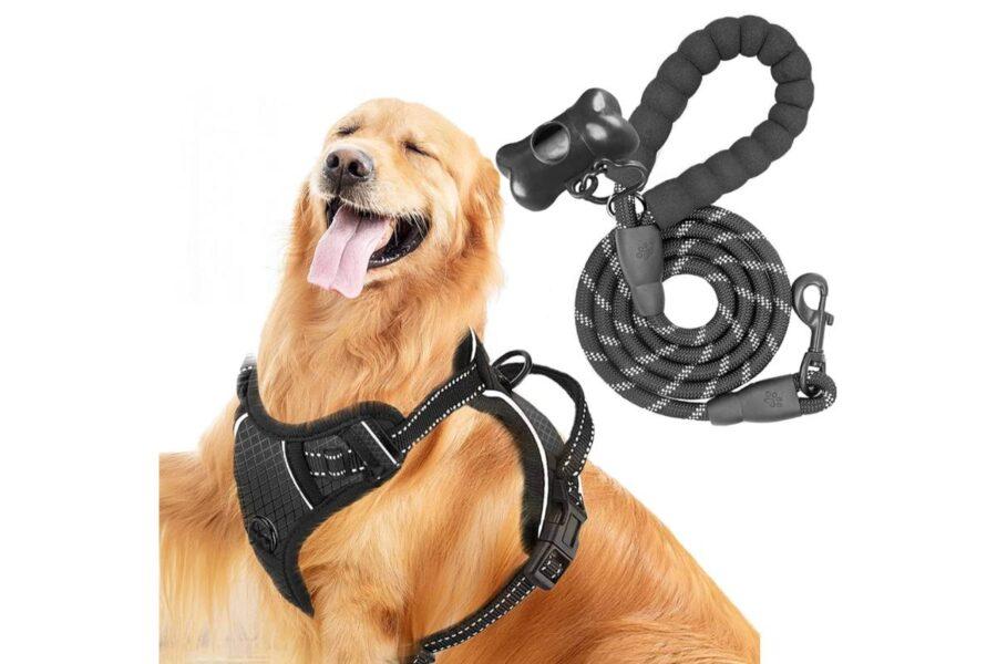 pettorina e guinzaglio per cani grandi