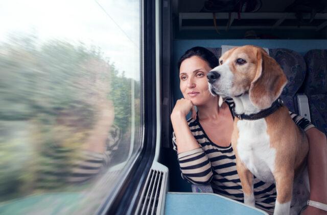 ragazza in treno con il cane