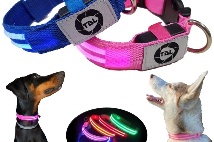 collari blu e rosa per cani