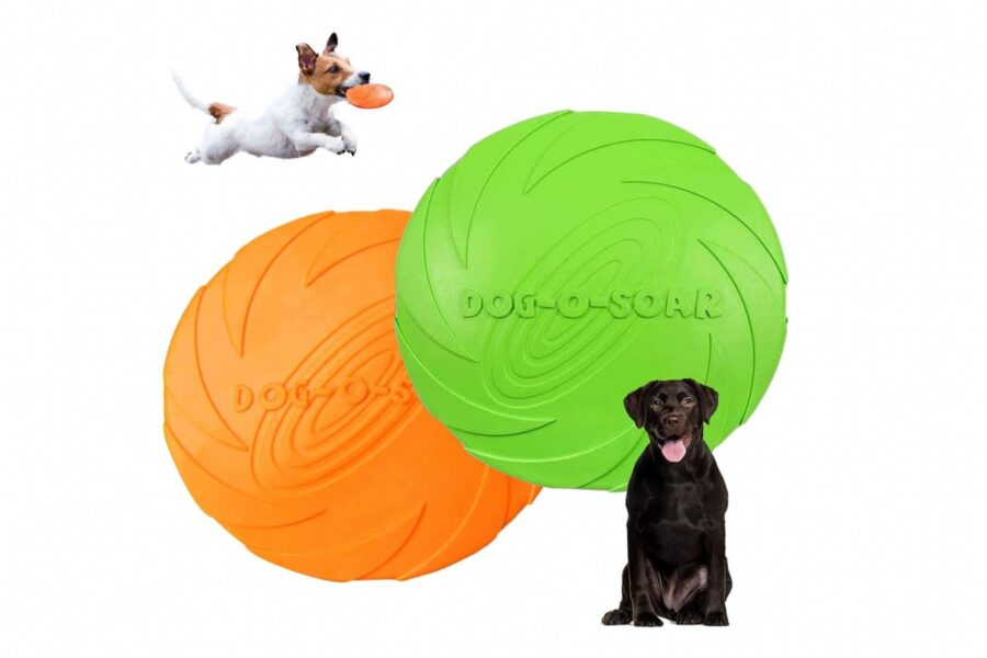 frisbee per cani