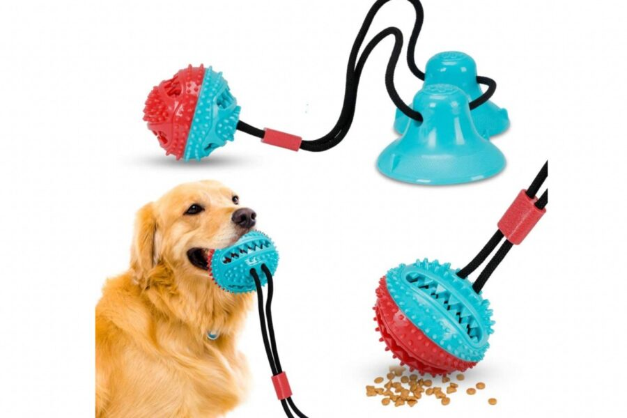 giocattolo interattivo per cani