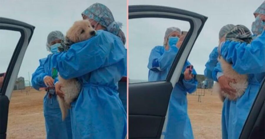 infermiera abbraccia cane