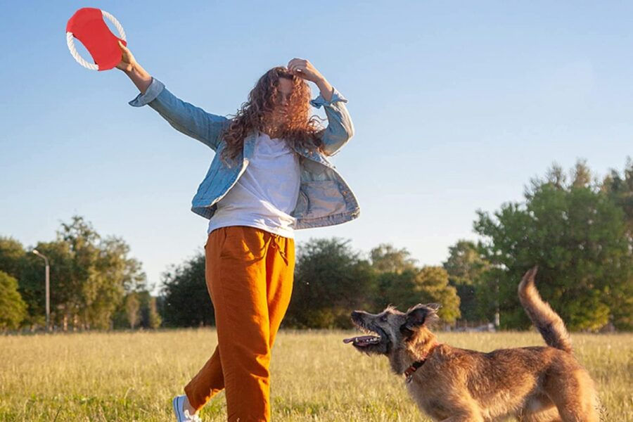 ragazza gioca con il cane e il frisbee