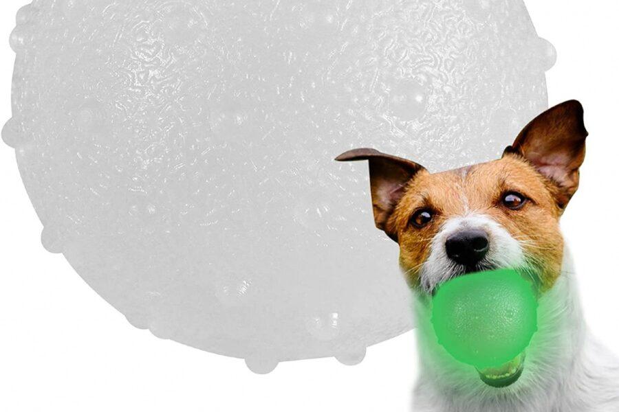 palla luminosa per cani