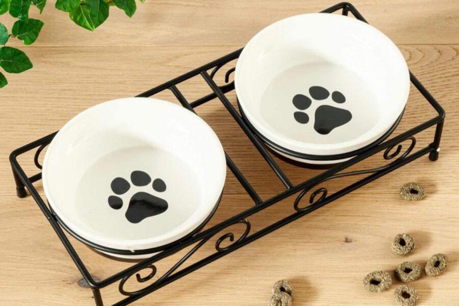 ciotole di ceramica per cani