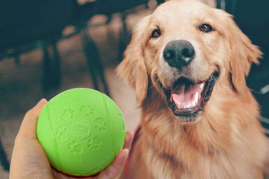pallina verde per cane
