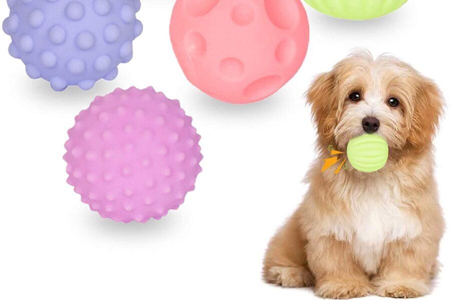 palline per cani