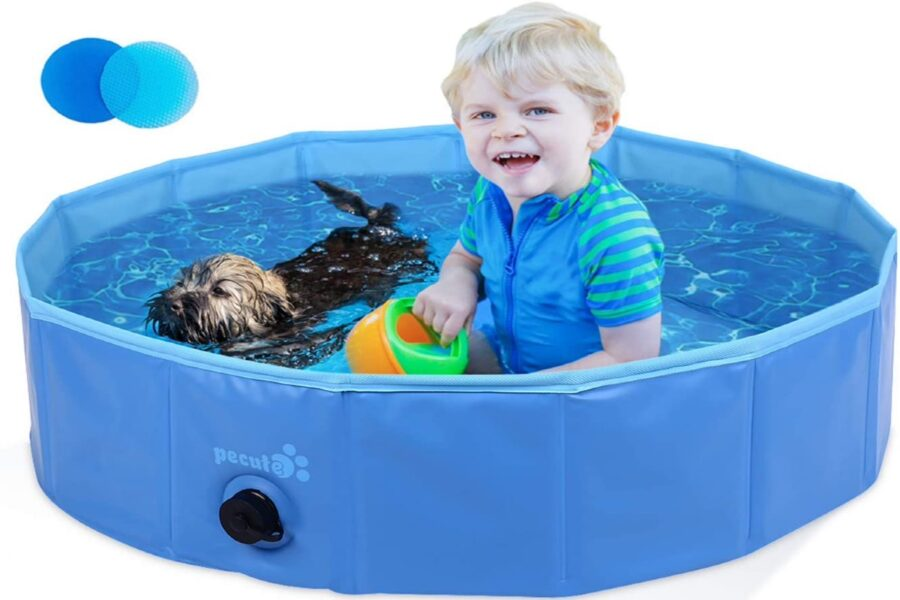 bambino con cane in piscina