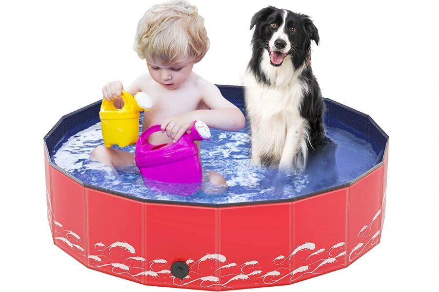 cane e bambino giocano nella piscina