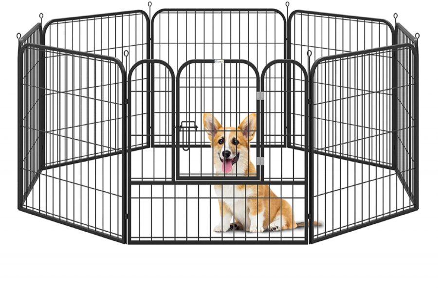 recinto per il cane