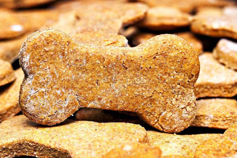 biscotti per cani preparati in casa