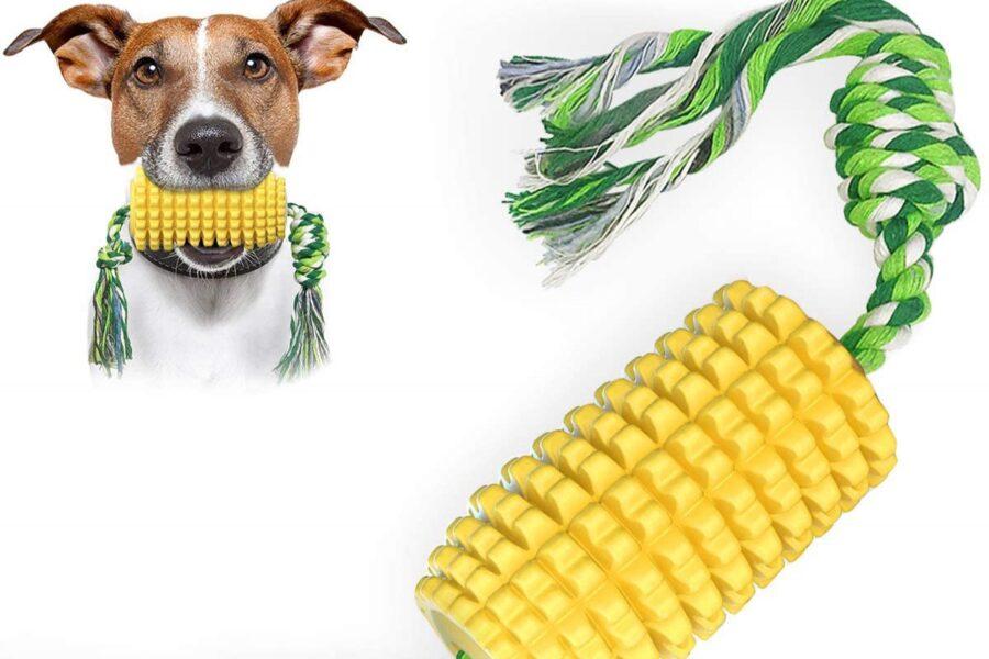 pannocchia per cani
