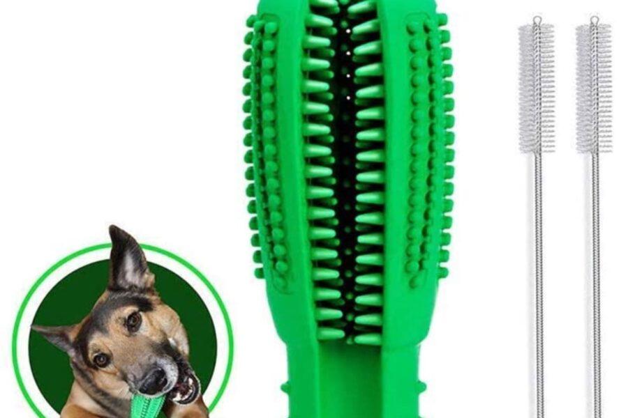 spazzolino per cani con ventosa