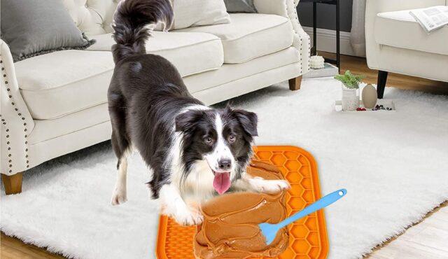 tappetino per alimentazione lenta del cane