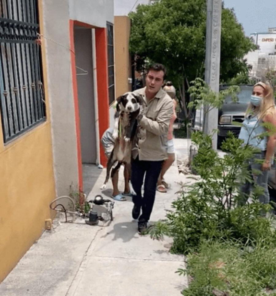 uomo porta cane in braccio
