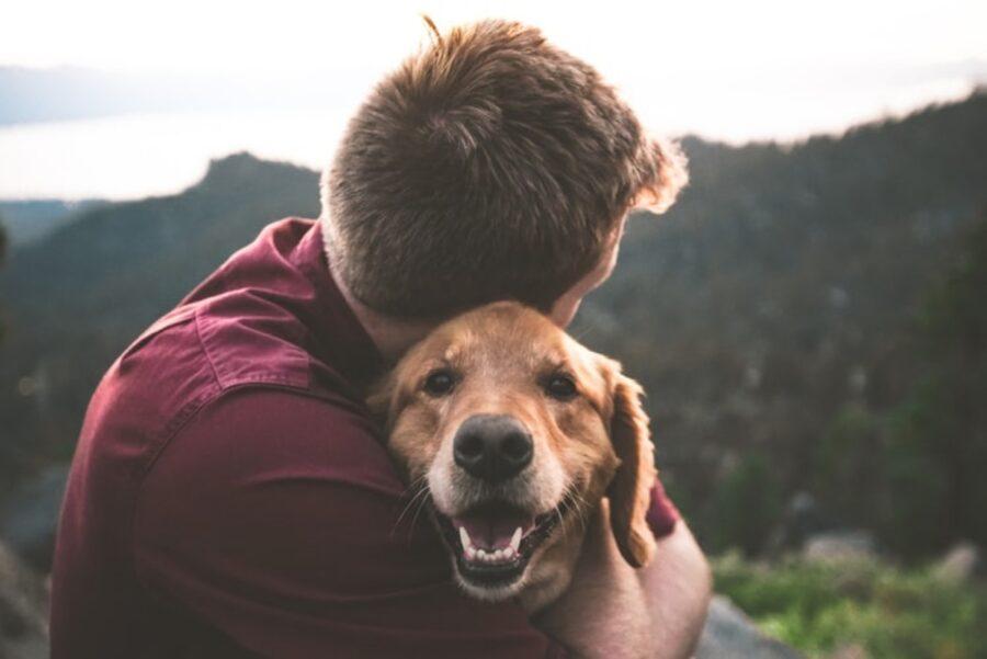 cane con papà