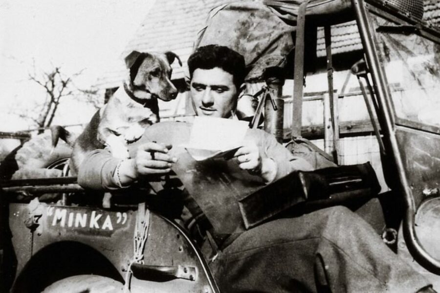 cane papà lettera