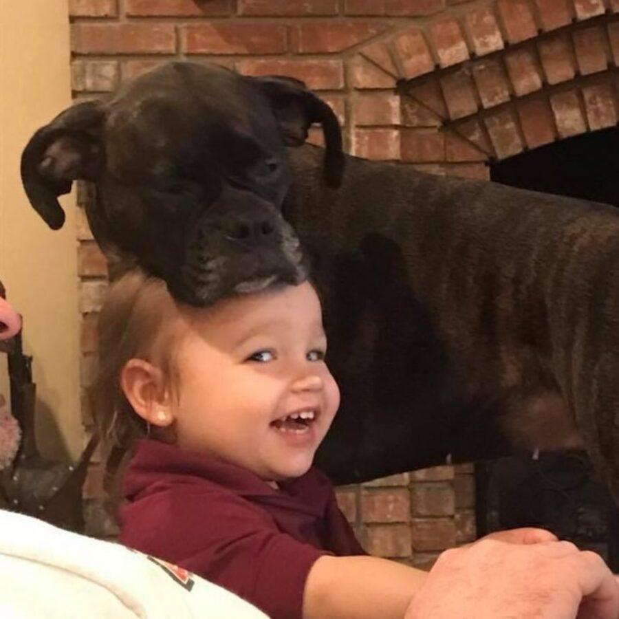 cane con bimba