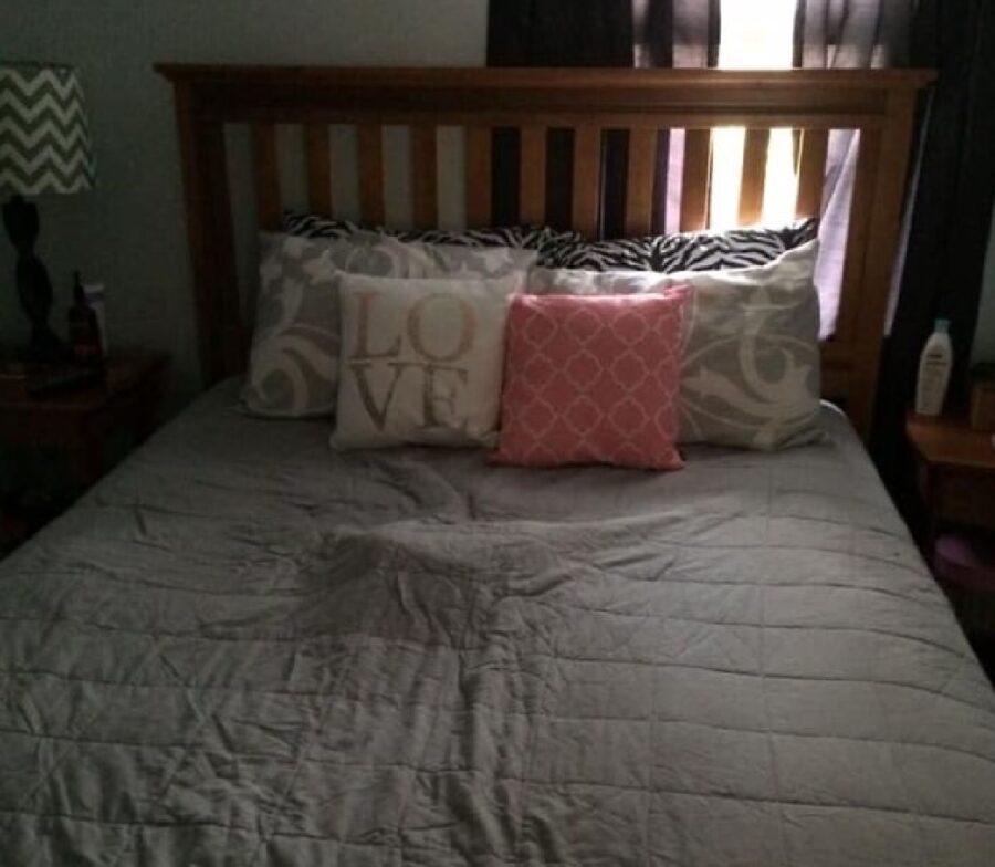 cane sotto coperte letto