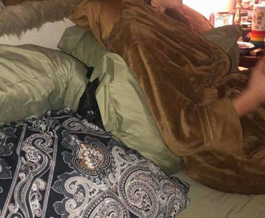cane sotto proprietaria coperta marrone