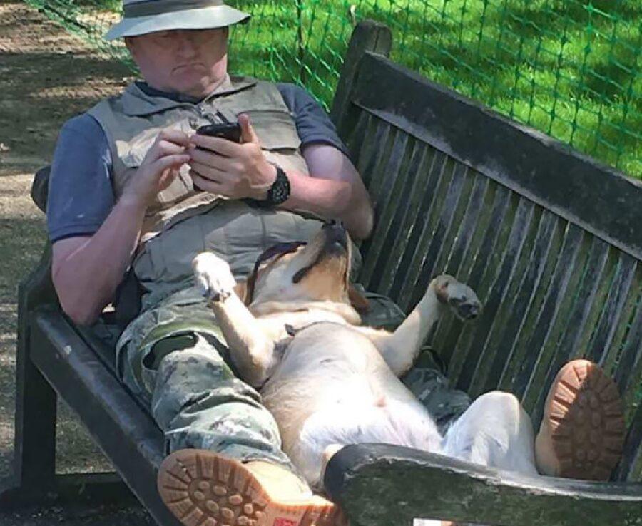 cagnolino dorme insieme proprietario