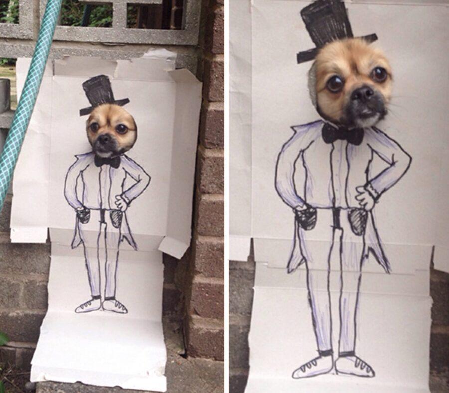 cane con cartone disegnato