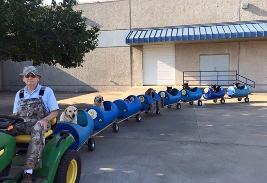 cane su trenino uomo anziano