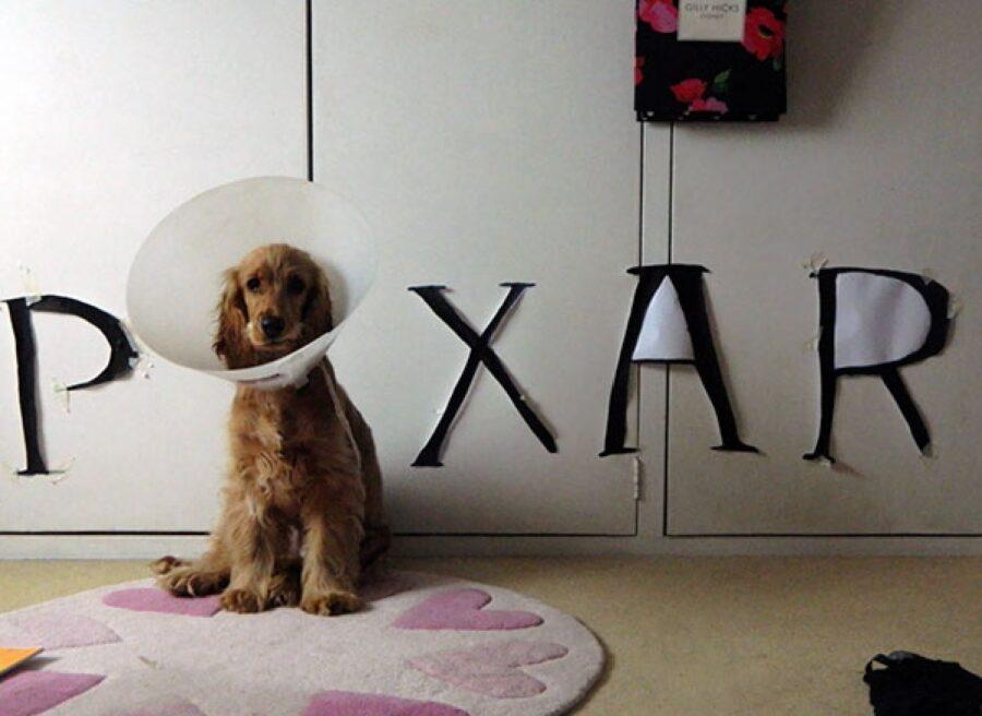 cane come logo pixar