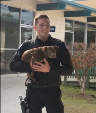 poliziotto con cucciolo