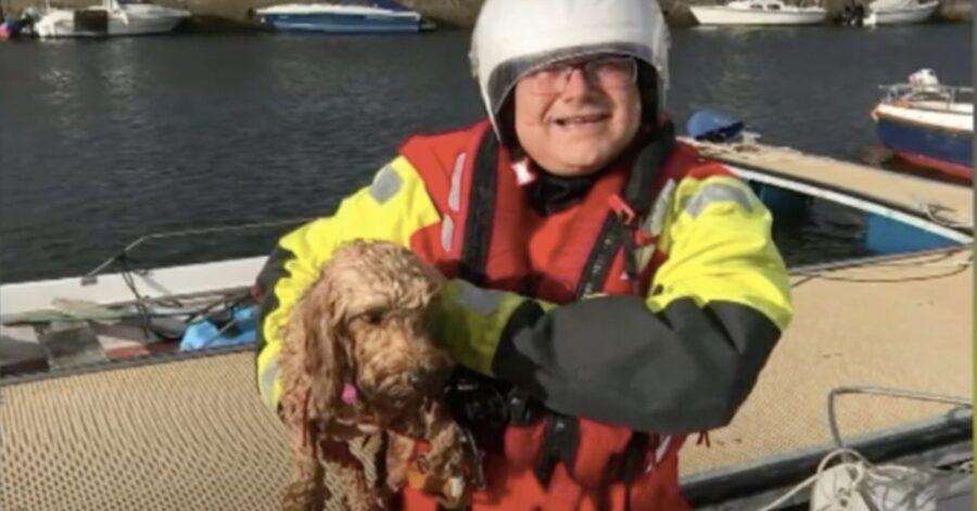 Guardia Costiera salva cane