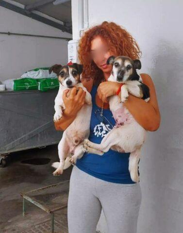 cagnolini in braccio