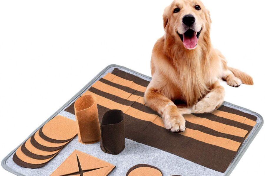 tappeto interattivo per cane