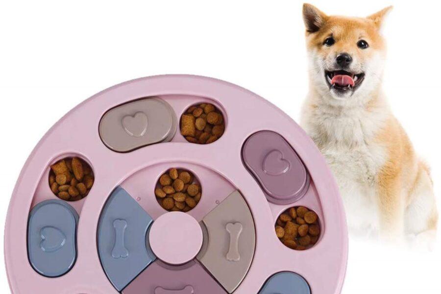 gioco con crocchette per cani