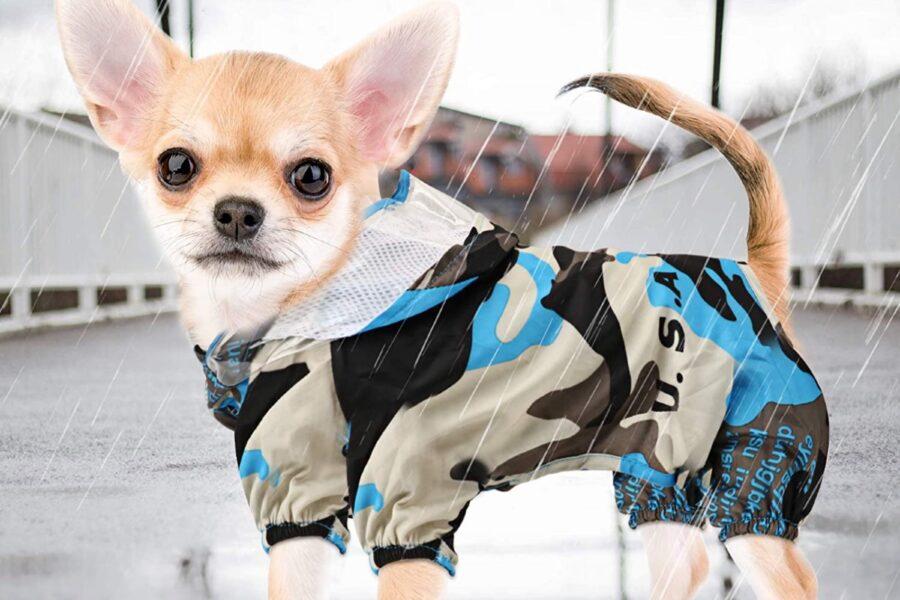 impermeabile militare per cane