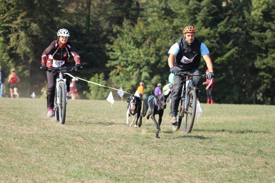 ragazzi in bici e cane al seguito