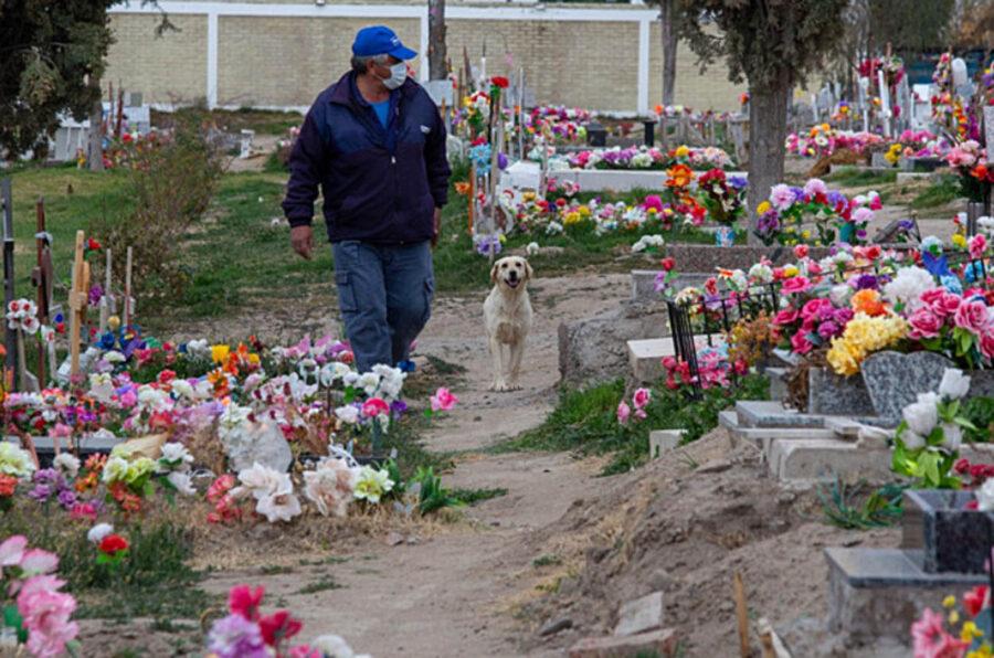 cane con guardiano del cimitero