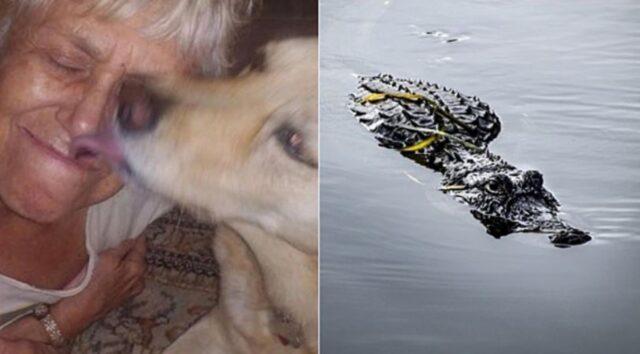 cane con la padrona
