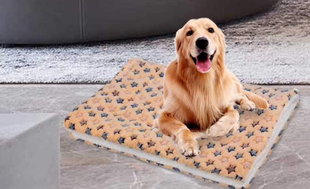 tappetino morbido per cani