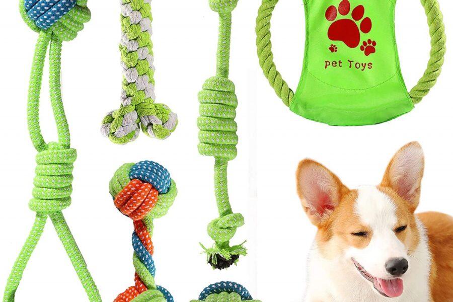 giochi di corda per il cane